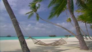 [10 Hours] Maldives Islands - Hammock between Palm Trees [1080pHD] SlowTV