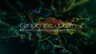 Tangerine Dream - It is Time to Leave When Everyone is Dancing (from Quantum Gate)
