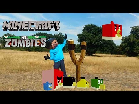 Real Life Minecraft steve and Angry birds vs Zombies
