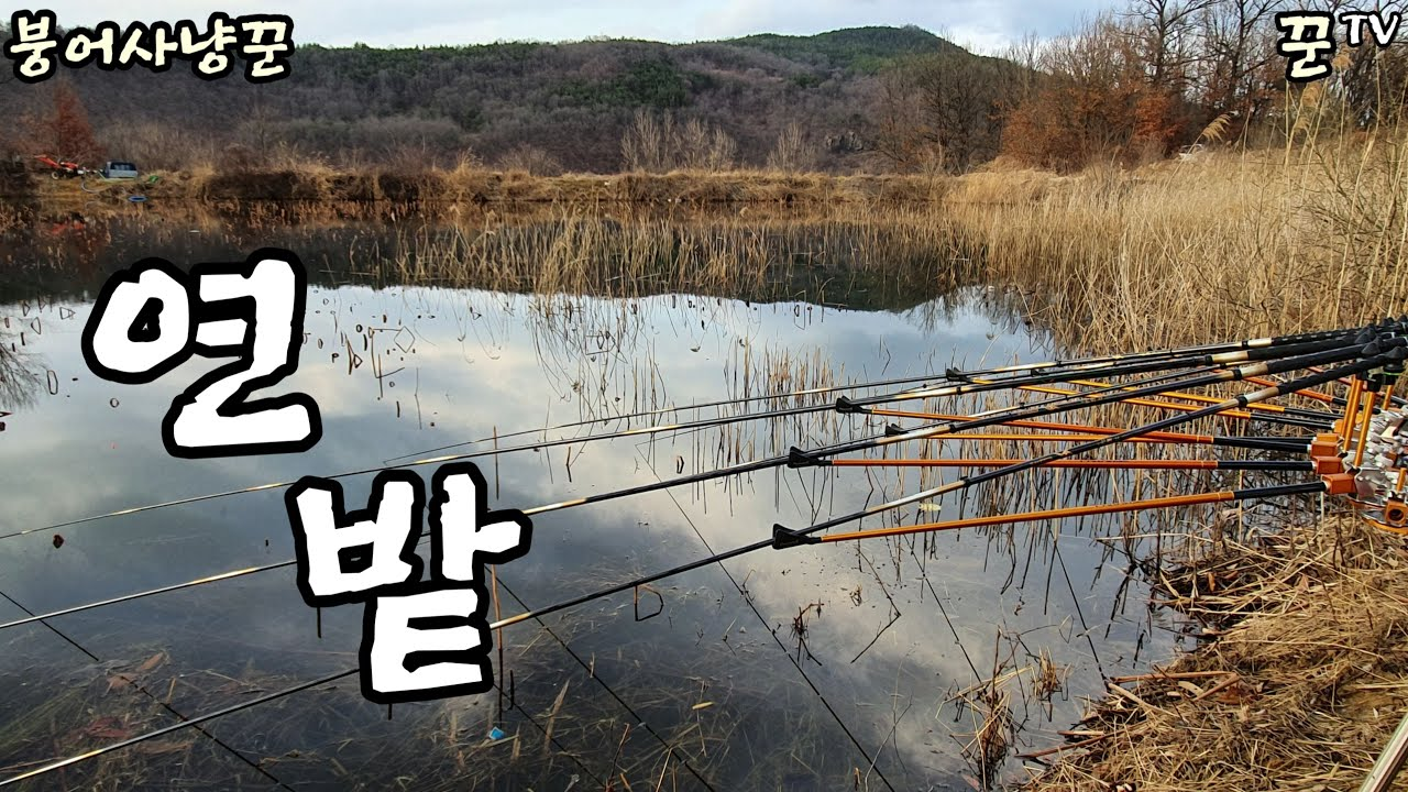 A급 연밭 (갈대 포인트) / Korea Fishing TV