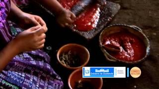 Festival Gastronómico 2014, Conoce mi Cultura - Guatemala