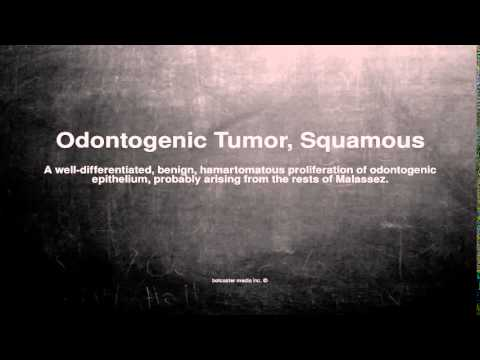 Medical vocabulary: What does Odontogenic Tumor, Squamous mean