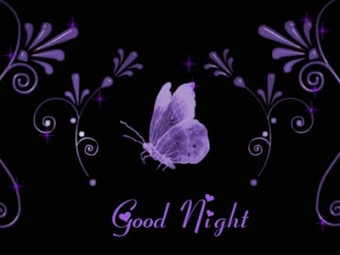 Good Night Video Whats App Romantic Beautiful Good Night Video Message In Hindi Youtube
