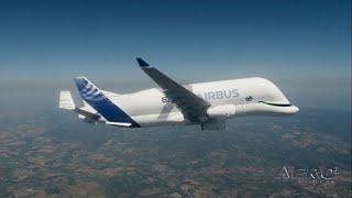 Airborne 01.15.20: Shootdown Arrests, Airbus BelugaXL, Orbis Flying Eye Hospital