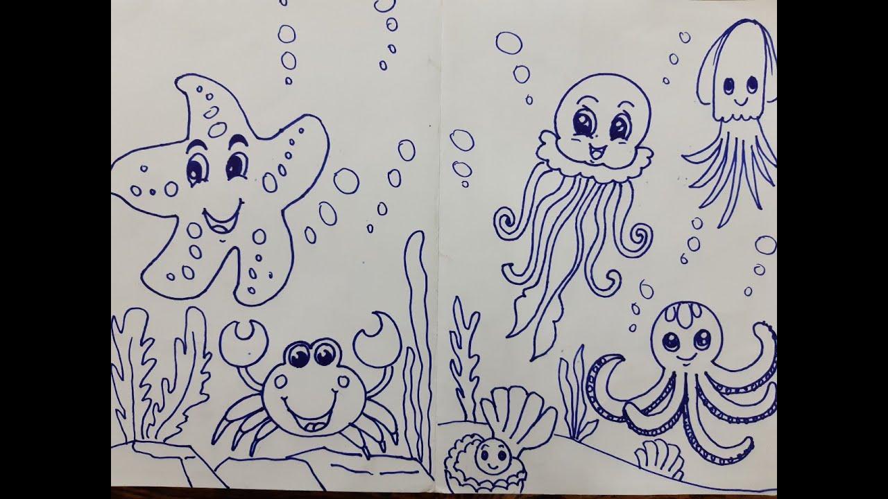 Cách vẽ các con vật dưới  biển Sao Biển Cua Bạch Tuột Mực Ngọc Trai How to draw animals under the se