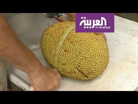 صباح العربية | استبدلوا اللحم بالكاكايا  - نشر قبل 2 ساعة