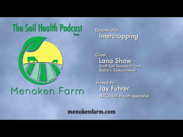 Episode 006 Intercropping