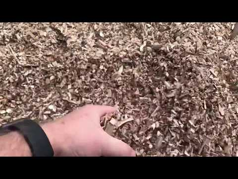 Make Your Own Mulch for FREE - Sun Joe Wood Chipper Review