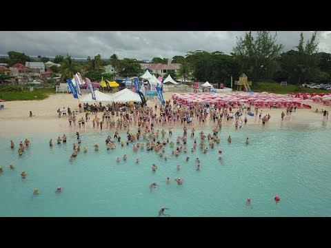Barbados Open Water Festival - Barbados Open Water Festival - Blog