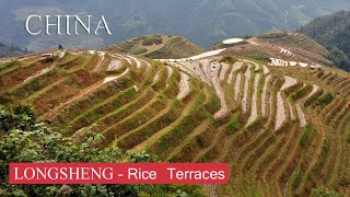 LONGSHENG -  Rice Terraces /  Reisterrassen - CHINA