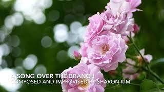 "Fresh New Piano Music by Sharon Kim - A Song over the Branch 새로운 피아노 음악 ""나무가지 위의 노래"" -샤론김"