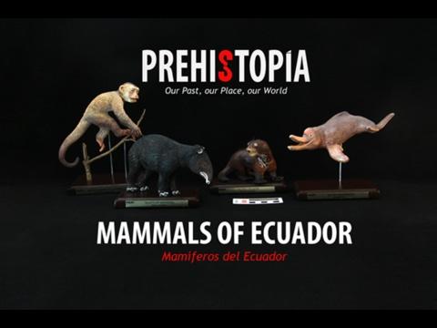 Mammals of Ecuador