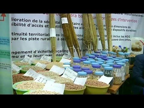 Niger, 3ème édition du Salon Sahel-Niger / Près de 50.000 visiteurs attendus