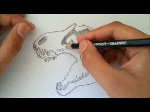 How To Draw a Tyrannosaurus Rex Skull with Pencil!