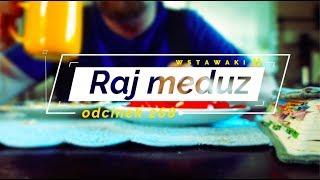 Wstawaki [#268] Raj meduz