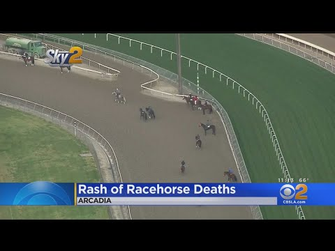 Santa Anita Race Track Closed Tuesday To Investigate Rash Of Horse Deaths
