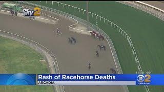 Santa Anita Race Track Closed Tuesday To Investigate Rash Of Horse Deaths