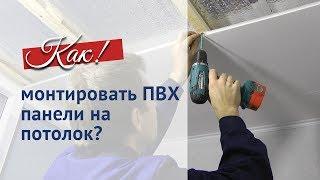 видео Как сделать потолок из пластиковых панелей: особенности и пошаговая инструкция