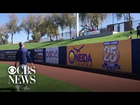 MLB player stops during spring training to play catch with boy