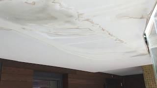 Экологичность натяжных потолков: фото и видео
