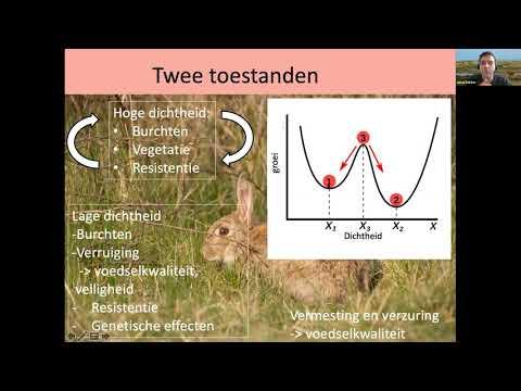 OBN webinar Herstel konijnenpopulaties in de duinen