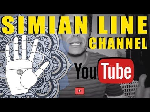 Simian Line Channel update 2017
