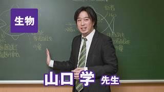 東進 講師紹介 - 生物 - 山口学先生