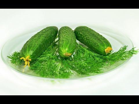Брокколи полезные свойства - польза и вред капусты брокколи