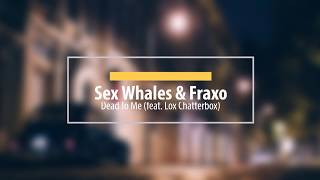 Sex Whales & Fraxo - Dead To Me (feat. Lox Chatterbox) |  No copyright