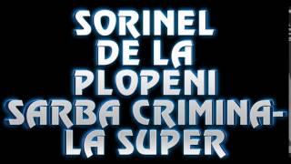 SORINEL DE LA PLOPENI SARBA CRIMINALA SUPER CHEF SI VOIE BUNA