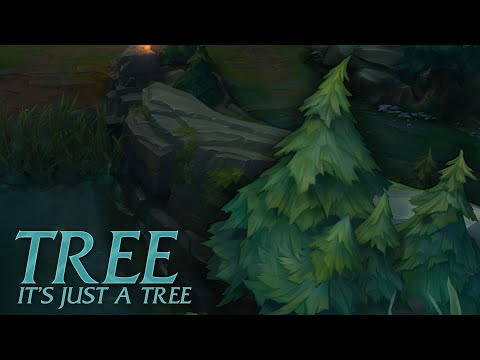 Tree Champion Spotlight