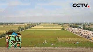 《我的美丽乡村》 20210112 寻找新粮地模式|CCTV农业 - YouTube