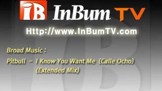 Pitbull - I Know You Want Me  (Calle Ocho) (Extended Mix)