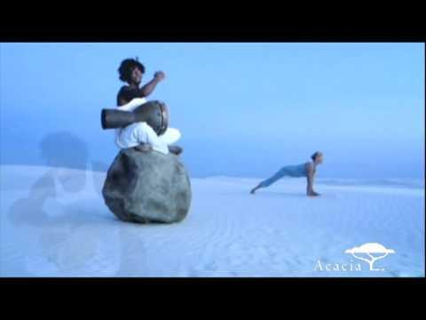 Kalari Vinyasa - From Shiva Rea: Power Flow Yoga