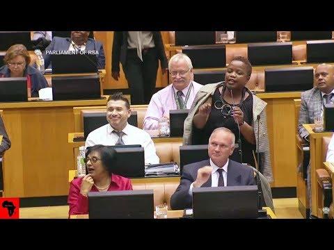 COMEDY In Parliament: DA van Damme vs DD Mabuza