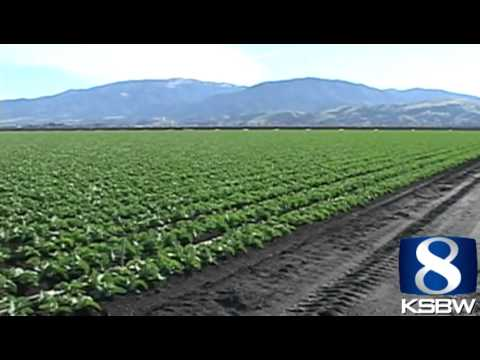 Can the Salinas Valley connect with Silicon Valley?