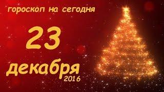 Гороскоп на сегодня 23 декабря пятница