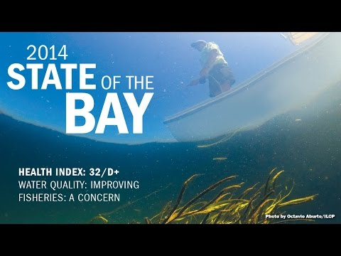 2014 State Of The Bay Report: Water Quality Improvements Offset By Fisheries Declines