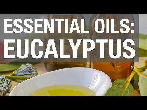 essential-oils:-eucalyptus-oil
