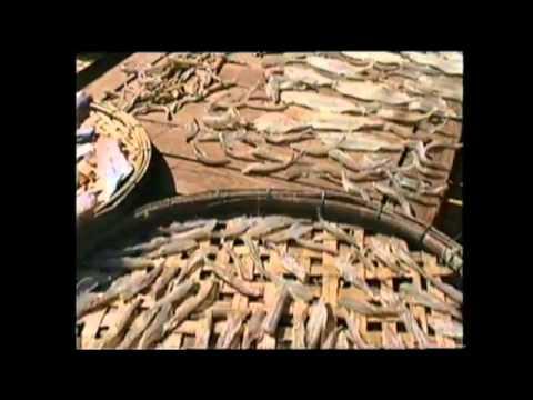 Hoi An, VIETNAM, ancien comptoir de commerce classé par l'UNESCO.qt