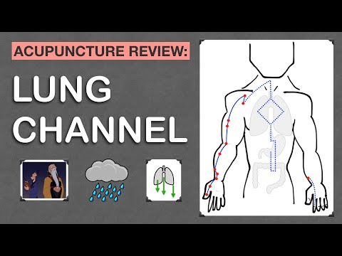Points Review: Lung Channel Acupuncture Meridian