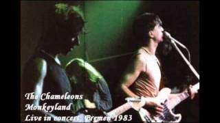 Play Don't Fall (Live In Concert, Bremen 1983)
