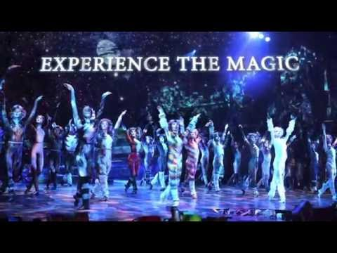 Cats – Once in a Lifetime, Experience the Magic