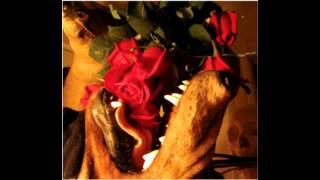 Matmos - The Rose Has Teeth In The Mouth Of The Beast (Full Album)
