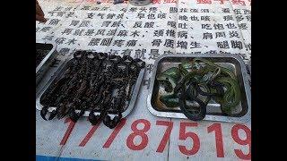 Chợ Biên Giới Việt Trung Bán Những Gì ? Hổ Báo Cáo Chồn | CHỢ PHIÊN TÂY BẮC - NORTHWEST MARKET