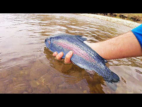 Secret To Kayak Fishing Texas For Beautiful Rainbow Trout On The Guadalupe River In 4K