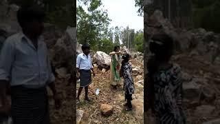 XXX aanup33 video