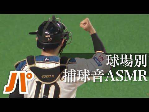 【ASMR】球場ごとに違う捕球音を堪能する10分間。