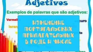 Изменение португальских прилагательных в роде и числе
