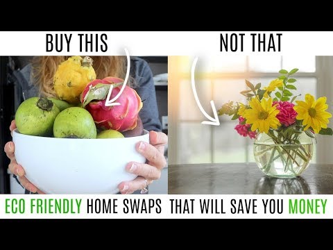 BUY THIS NOT THAT /  MINIMALIST HEALTHY HOME SWAPS